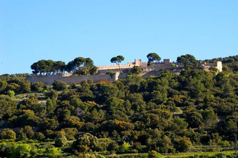 vue du castellas de montpeyroux qui domine au loin avec ses beaux murs de rempart et ses grands sapins à quelques endroits