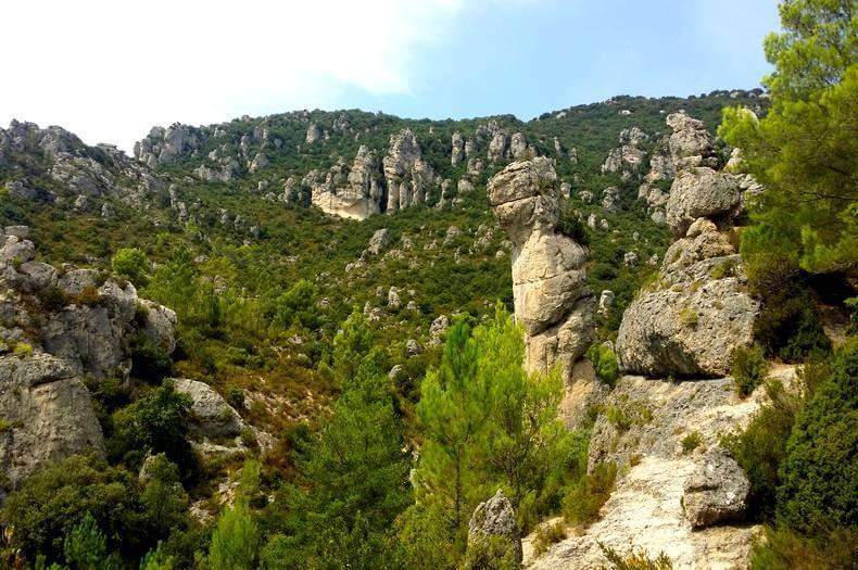 vue au cœur du cirque de mourèze avec des collines de roches de toutes formes et des sapins